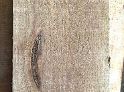 实木家具诞生记:一块木头的蜕变