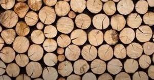 万仕达木业有限公司