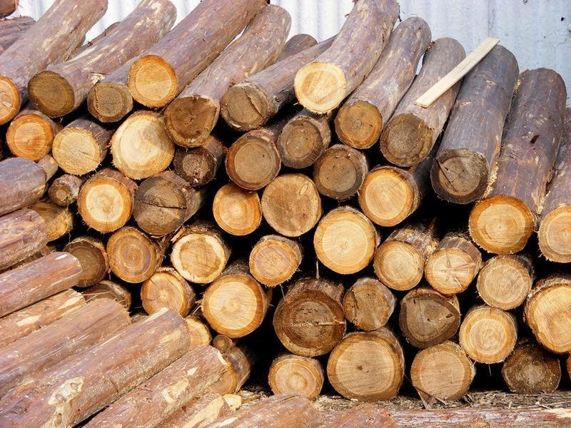 中国传统家具的独特木材处理工艺