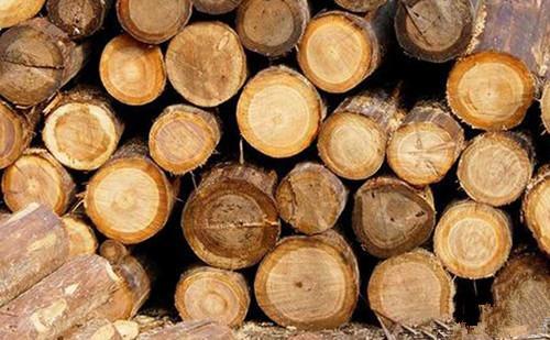 木材中水分有哪几种?