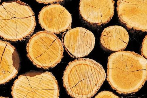 木材的类型