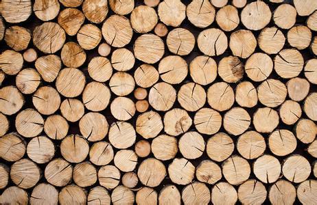 """木材价格一路上涨,深思背后蕴藏""""危机"""""""