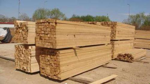 进入9月后 木材市场热门材种放量明显增加