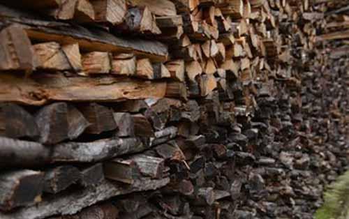 瑞士木材价格走高导致采伐量增加