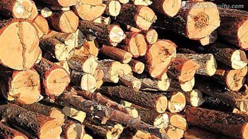 贵州风华镇开展木材加工企业消防安全检查