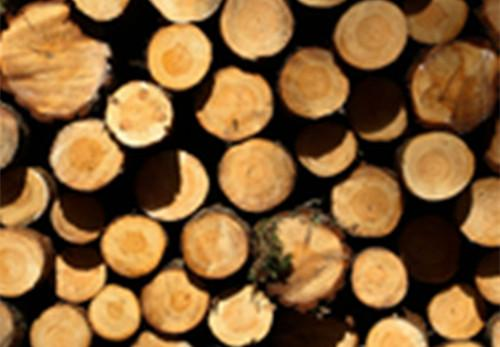 木材行业规范后,老挝海外订单量猛增
