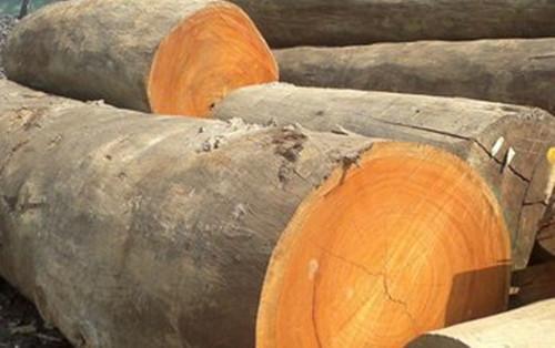 中美贸易战木材价格上涨,木质托盘首当其冲