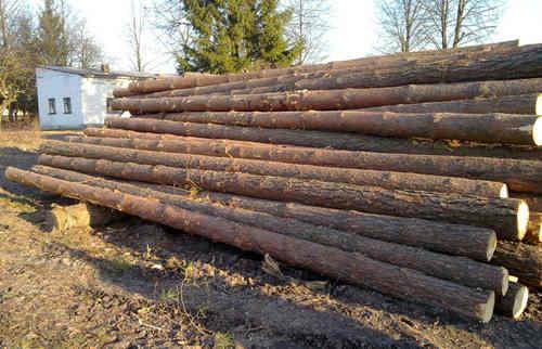黑龙江累计为国家贡献超7亿m³木材