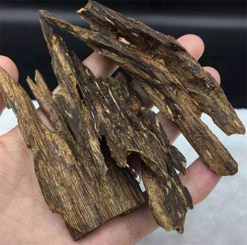 黄花梨都弱爆了,这才是世界上最贵的木头!