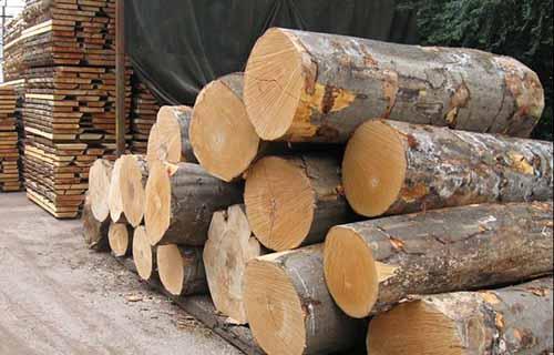 刘能文:多因素致中国木材加工行业发生变化!