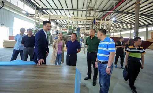 平南县政协助推林木加工产业提档升级