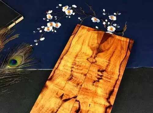 被人当做海黄的白酸枝,到底是什么来历?南美白酸枝又是什么?