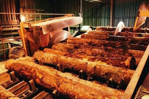 国内木材加工企业开工率下降